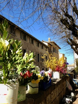 Assisi - Spring flowers for sale