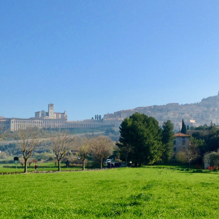 Assisi from across the fields